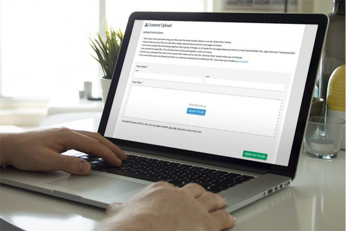 Eldo Web Design Client