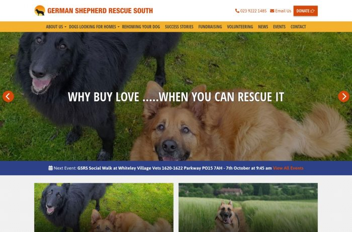 german shepherd rescue south Desktop